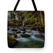 Brandy Creek Falls Tote Bag