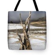 Bristlecone Fog And Sierra Nevada 1 Tote Bag