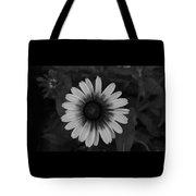 Brown Eyed Susan Tote Bag
