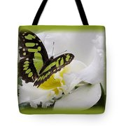 Butterfly On White Tote Bag