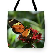 Long Winged Beauty Tote Bag