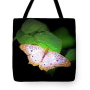 White Peacock Butterfly Wonderland A Series  Tote Bag