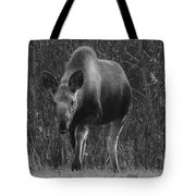 Bw Moose Tote Bag