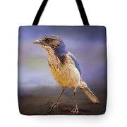 Blue Scrub Jay Tote Bag