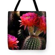 Sonoran Spring Tote Bag