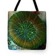 Cactus Ring Coral Tote Bag