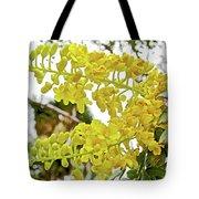 Caesalpinia Cacalaco In Huntington Desert  Gardens In San Marino-california  Tote Bag