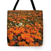California Poppies Desert Dandelions California Tote Bag