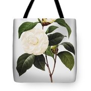 Camellia, 1833 Tote Bag
