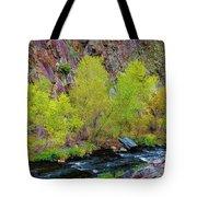 Canyon Color Tote Bag