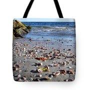 Cape Cod Beach Finds Tote Bag
