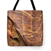 Capitol Reef 9497 Tote Bag
