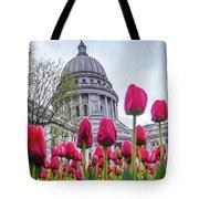 Capitol Tulips Tote Bag