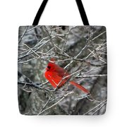 Cardinal On Icy Branches Tote Bag
