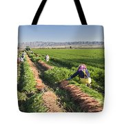 Carrot Harvest Tote Bag