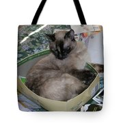 Cat In A Box Tote Bag