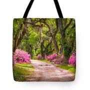 Catalpa Alley Tote Bag