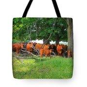 Cattle Herd Tote Bag