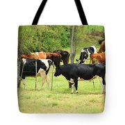 Cattle In A Pasture Tote Bag