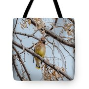 Cedar Waxwing Beauty Tote Bag