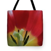 Center Attraction Tote Bag by Tracy Hall
