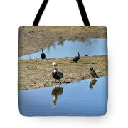 Center Of Attraction Tote Bag
