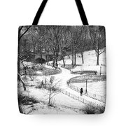 Central Park 6 Tote Bag by Wayne Gill