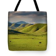 Central Valley California Tote Bag