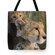 Cheetah Acinonyx Jubatus And Cub Tote Bag