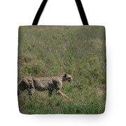 Cheetah On The Serengeti Tote Bag