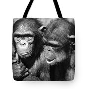 Chimpanzees Tote Bag
