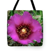 Cholla Cactus Flower Tote Bag
