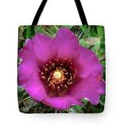 Cholla Cactus Flower Tote Bag