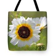 Chrysanthemum Named Polar Star Tote Bag