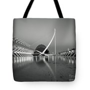 City Of Arts And Sciences Tote Bag
