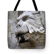 Closeup Of A Public Fountain In Dubrovnik Croatia Tote Bag