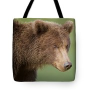 Coastal Brown Bear Tote Bag