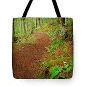 Coastal Trail Tote Bag