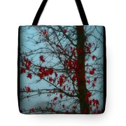 Cold Day In Winter Tote Bag