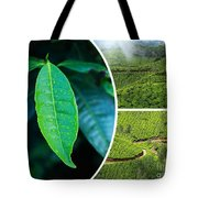 Collage Of  Tea Plantations In Munnar  Tote Bag