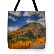 Color In The Clouds Tote Bag