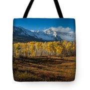 Colorado Fall II Tote Bag