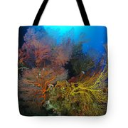 Colorful Assorted Sea Fans And Soft Tote Bag