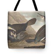Common Cormorant Tote Bag