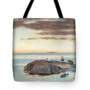 Common Eiders On A Rock Tote Bag