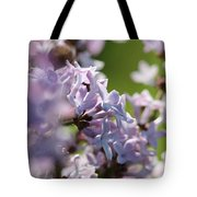 Common Purple Lilac Tote Bag