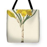 Common Yellow Crocus Tote Bag