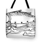 Constellation: Pisces Tote Bag