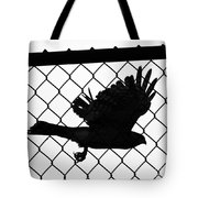 Coopers Hawk Tote Bag