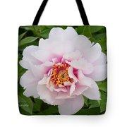Cora Louise Tote Bag